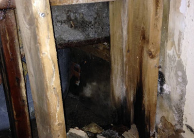 Asbestos & Mould Removal Services