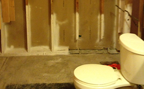 Asbestos & Mold Removal Services